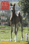 Cahiers du Cheval Arabe Numero 21