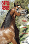 Cahiers du Cheval Arabe Numero 41